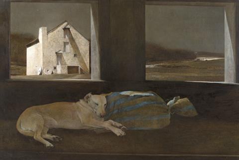 Andrew Wyeth's Night Sleeper