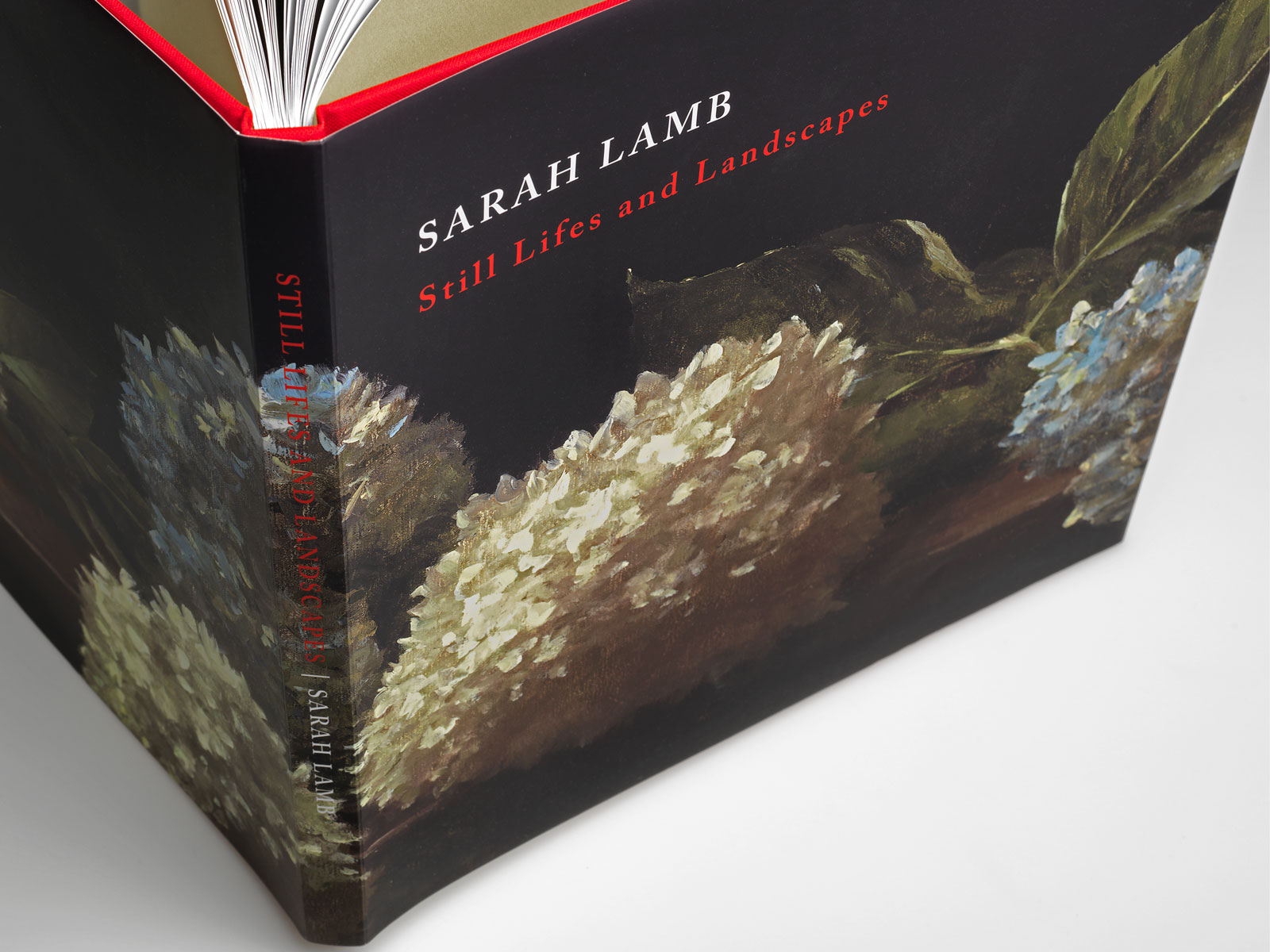 Sarah Lamb's <em>Still Lifes and Landscapes</em>