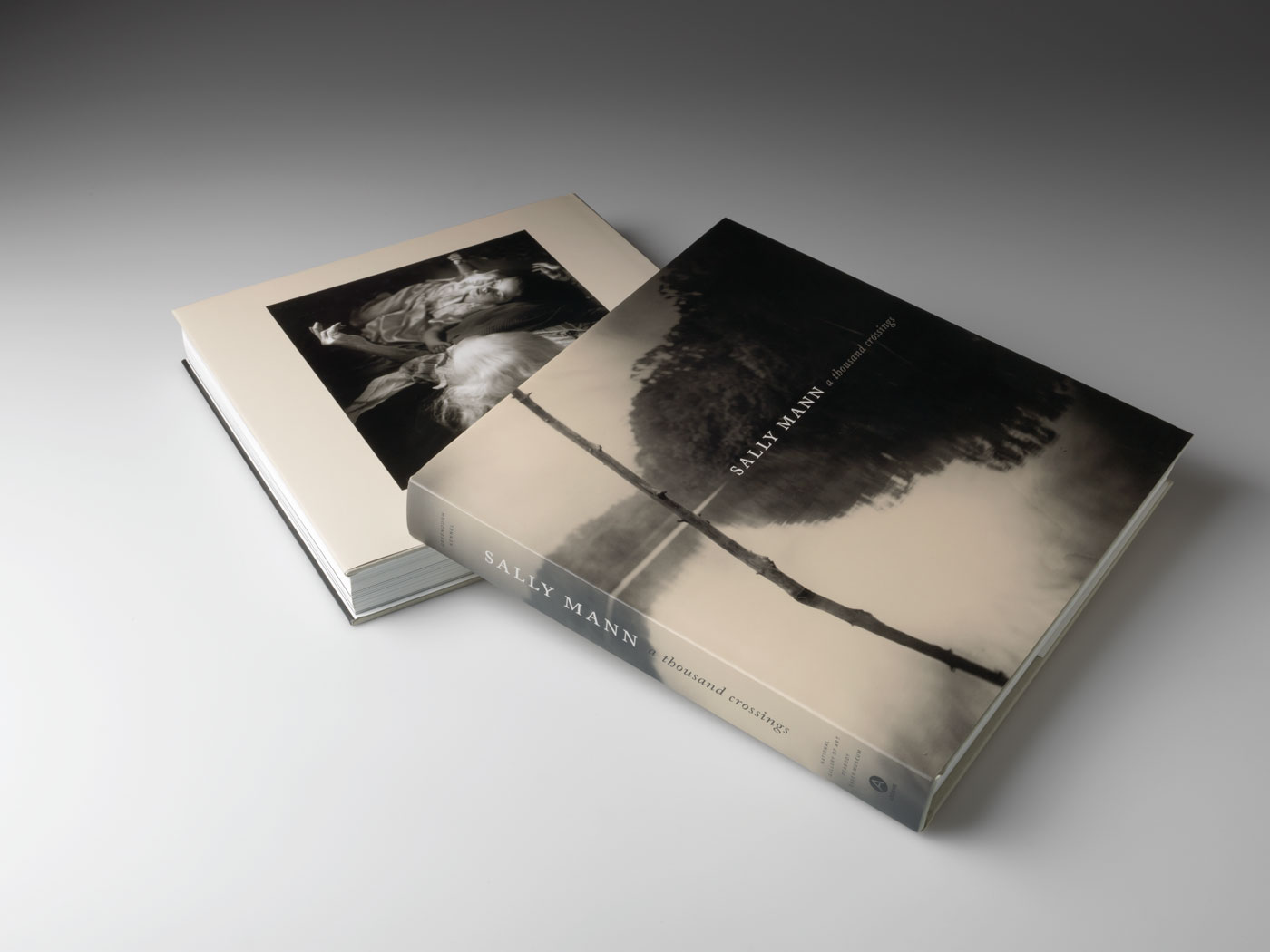 Sally Mann's <em>A Thousand Crossings</em>