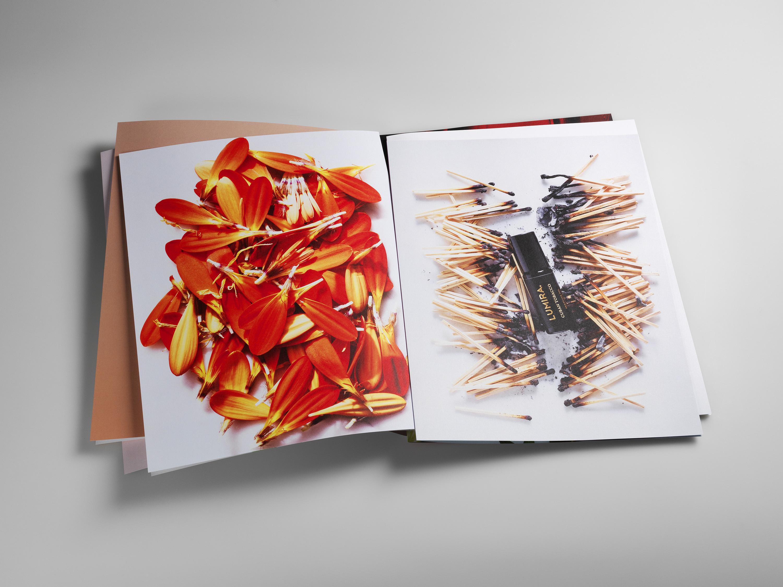 Two Extraordinary Portfolios from David Prince