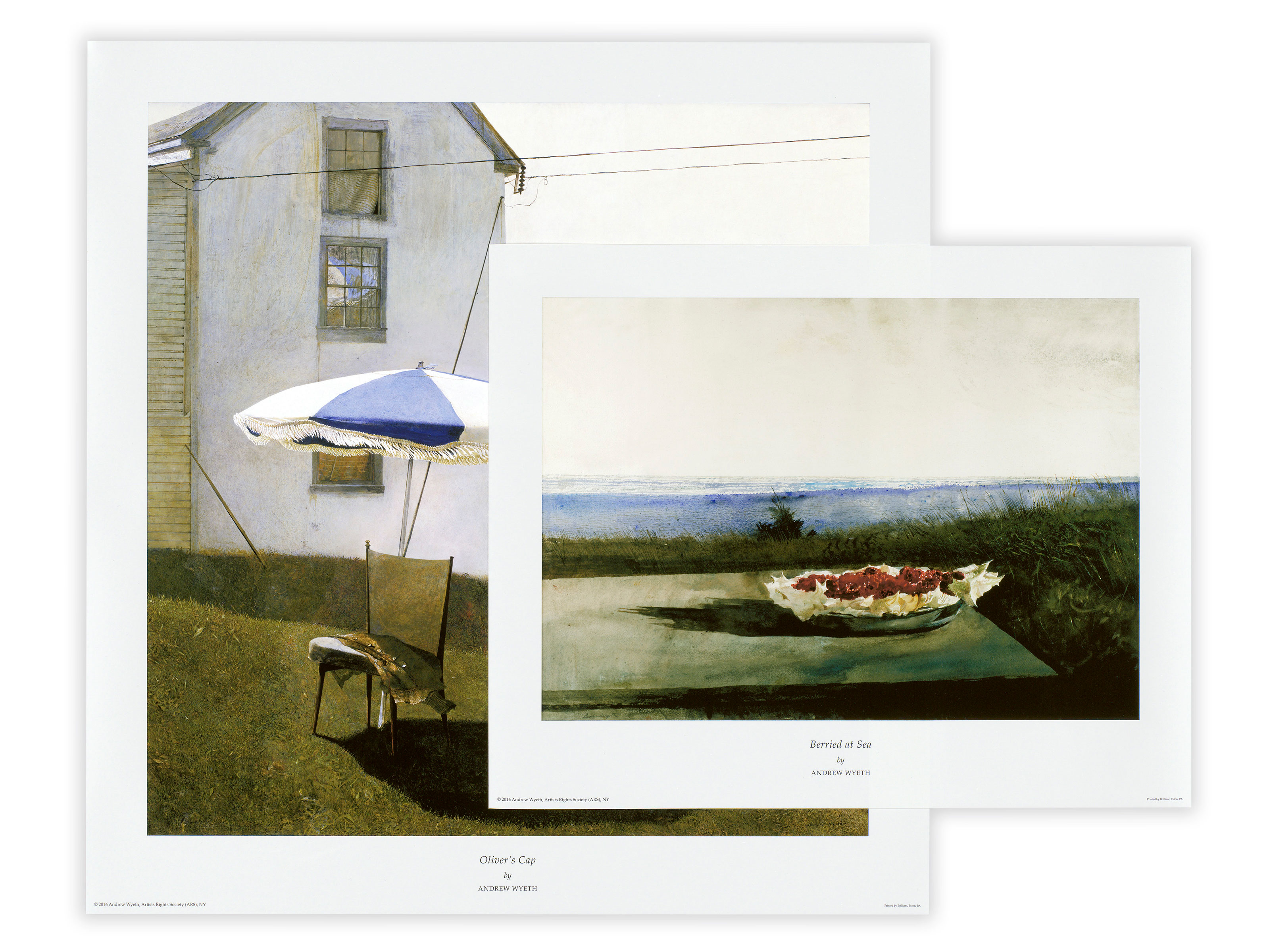 Our Exclusive Andrew Wyeth Collection