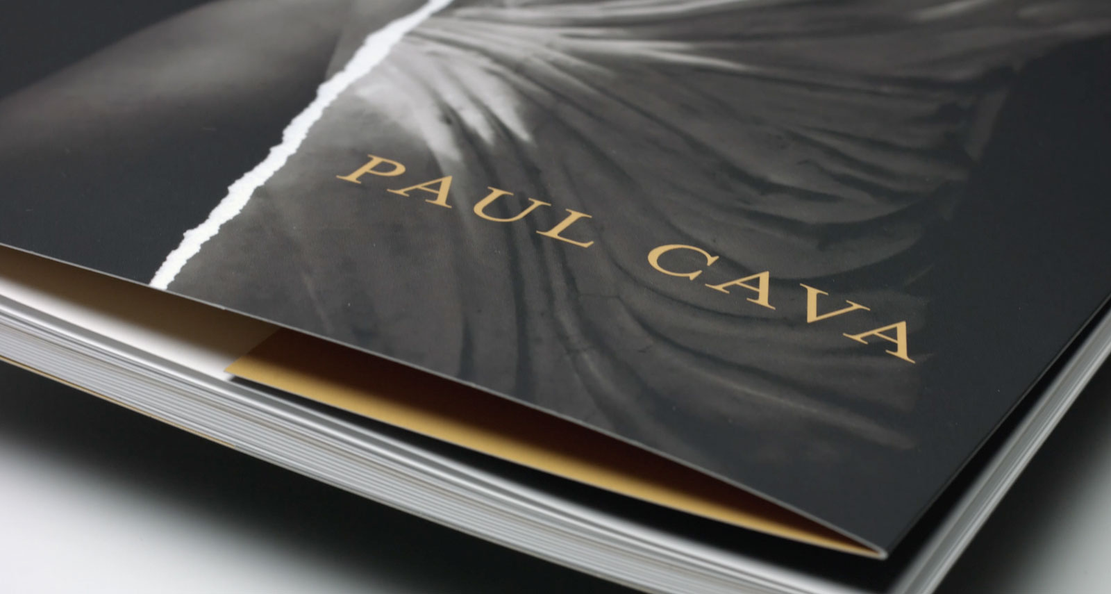 New book release by PAUL CAVA