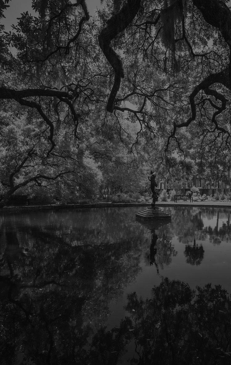 Brookgreen Garden Photo contest winner