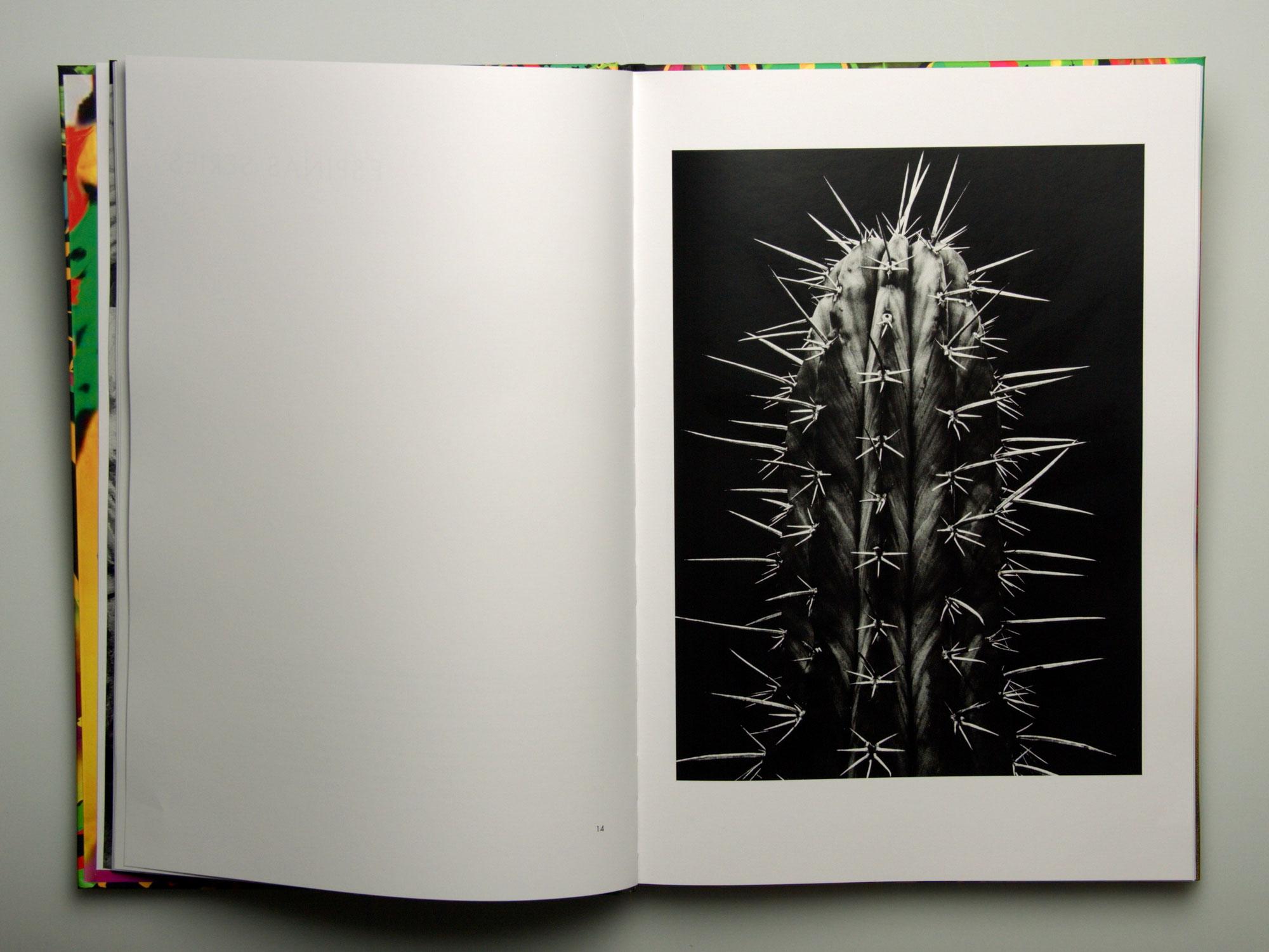 Eugenia Rendón de Olazabal – Photographs Through Time