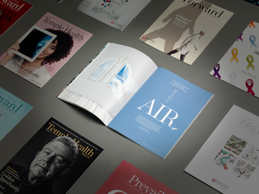 A Closer Look at Healthcare and Educational Publications